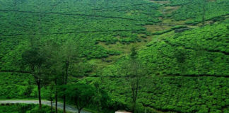 places to visits in Gavi, Gavi